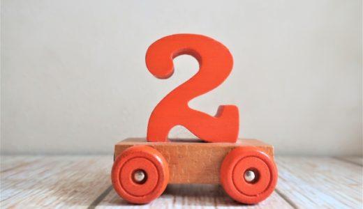 【発達ゆっくり育児】2歳~2歳半頃の運動面・認知面の様子をまとめてみました!